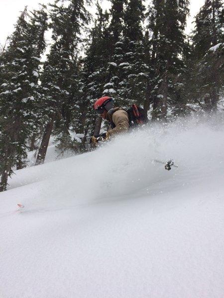 Pow turns on Chikadee Ridge's Northerly Aspect