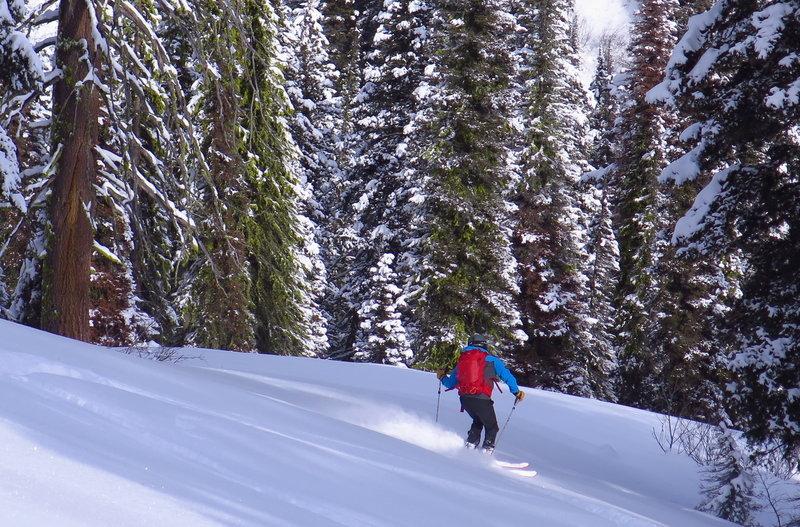 Skiing down toward the creek