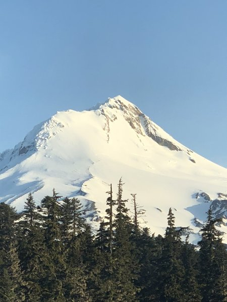 Wy'east face is the aspect under the left side of the east face of Mt. Hood.