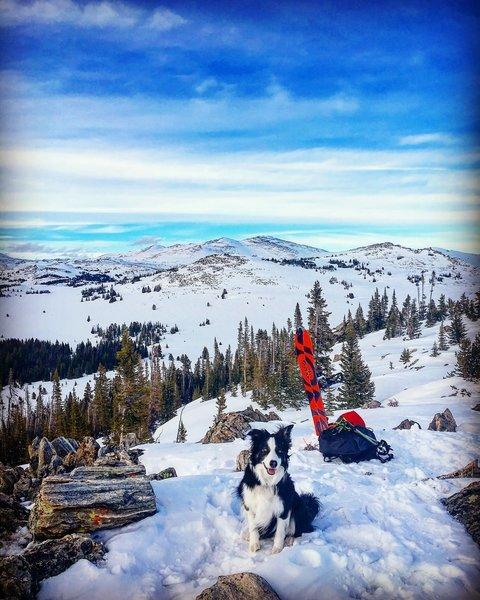 Hazel looking Classy ontop of Powder River Peak