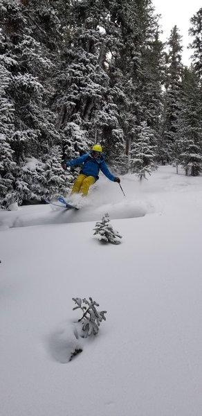 John V skiing 6.3