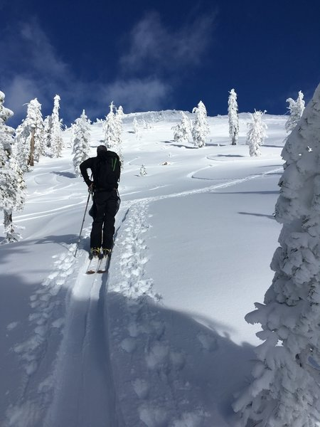 Skinning up the southeast face of Basin Peak.