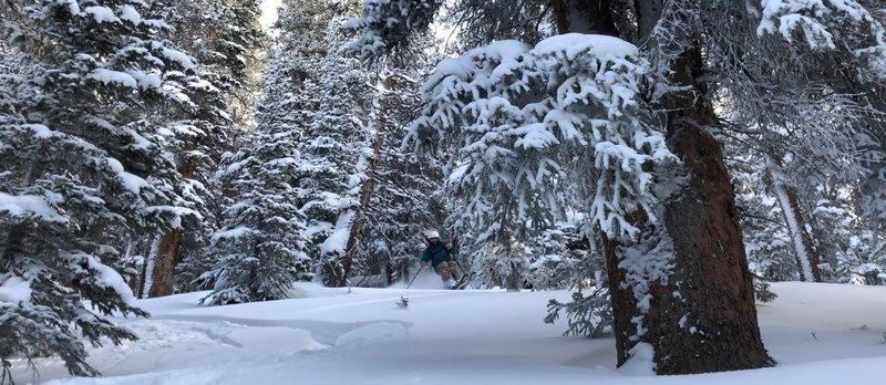 Kevin G skiing 6.5 - Dec 9 2018