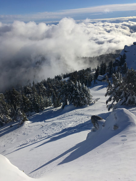 Looking ENE from the peak of Mt Ashland. You can see the Balcony and Ado runs (left to right)