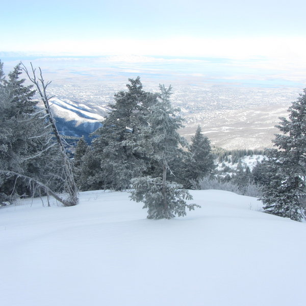 The view West from the top of Black's Peak Apron ski run.  Ski through the trees to reach the apron.