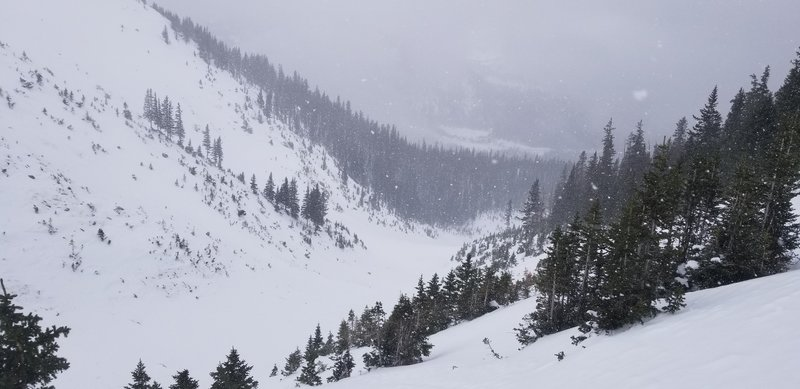 Looking back down into the Roberts Creek Drainage before entering the trees