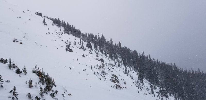 Looking back at the Roberts Creek Shoulder drop in point, we skied the double fall line near the edge of the trees