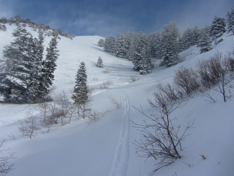 "You can ski further down after reaching the bottom of the ""V"" of Black's Peak Apron, as shown here."
