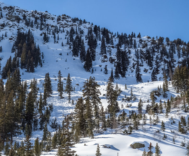 Large avalanche in Wildy 1 which occurred between January 17th and 20th 2018. This is one of the reasons Taos Ski Valley doesn't have backcountry gates and has a closed boundary policy. This is the first chute south of the ski area on Kachina Peak.