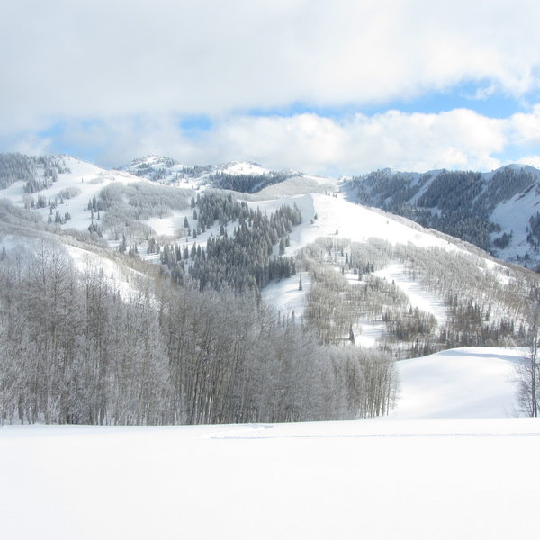 This was taken at the start of the Powder Parkin ski run looking south.  The drainage shown is the Powder Park 1 area.  More great skiing can be had left of the photo (out of view.)  Desolation Lake is over and behind the ridge front and center.