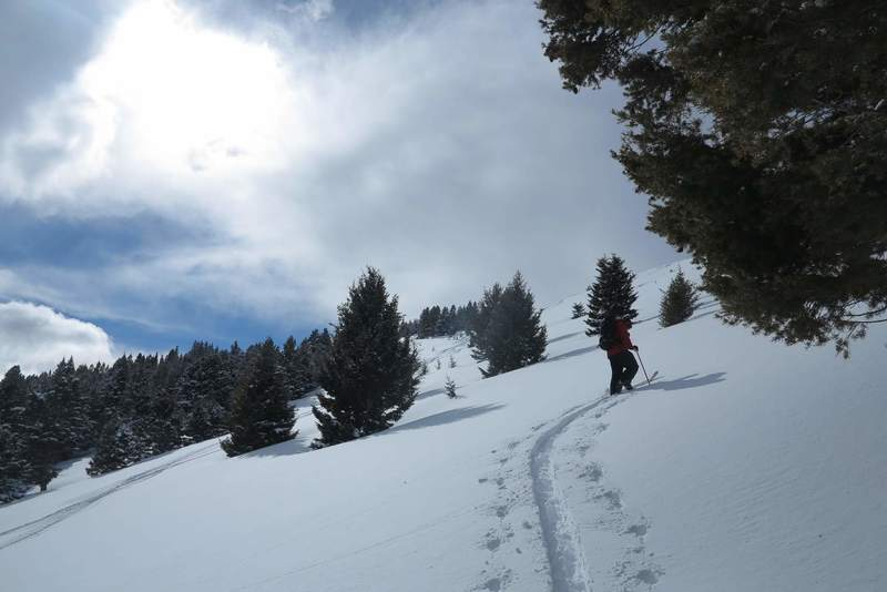 Skiing back up the second meadow.