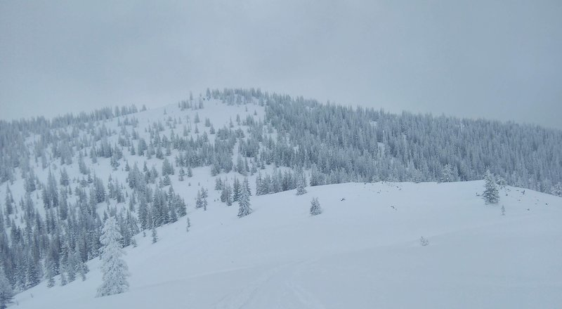 The open glades of the northwest face on the Southern High Point (11,692ft).