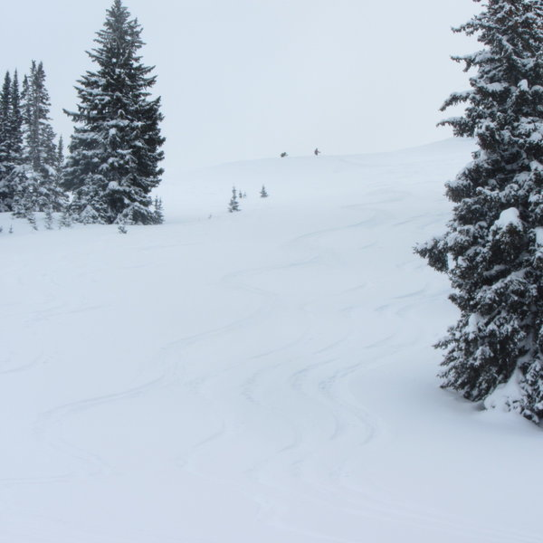 Lots of nice tracks and some sloppy tracks in the middle. Guess which ones are mine.
