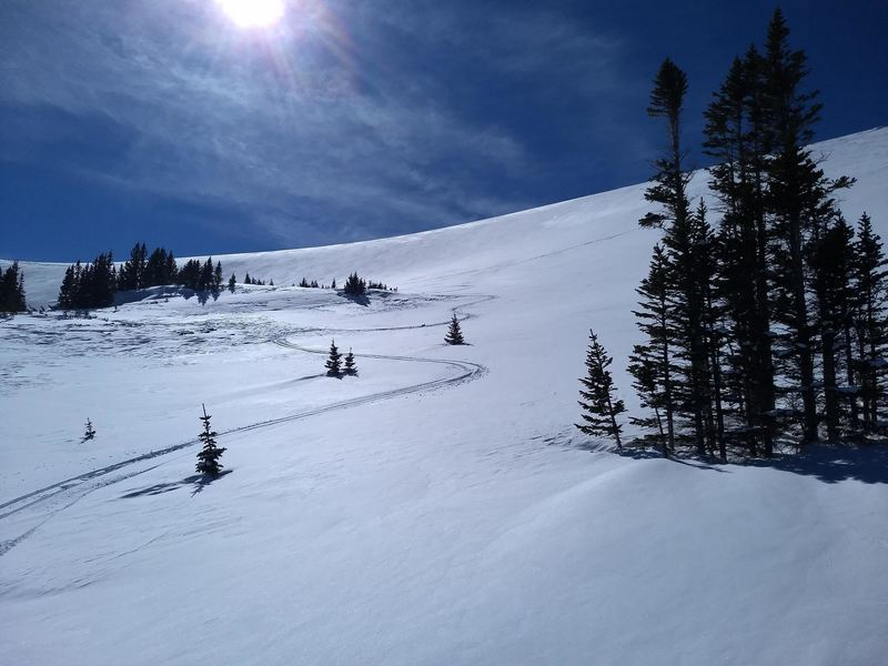 Looking up at the Lower East Bowl from treeline