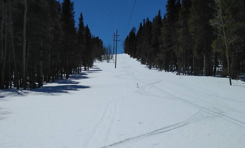 Casual turns under the powerline in spring snow.