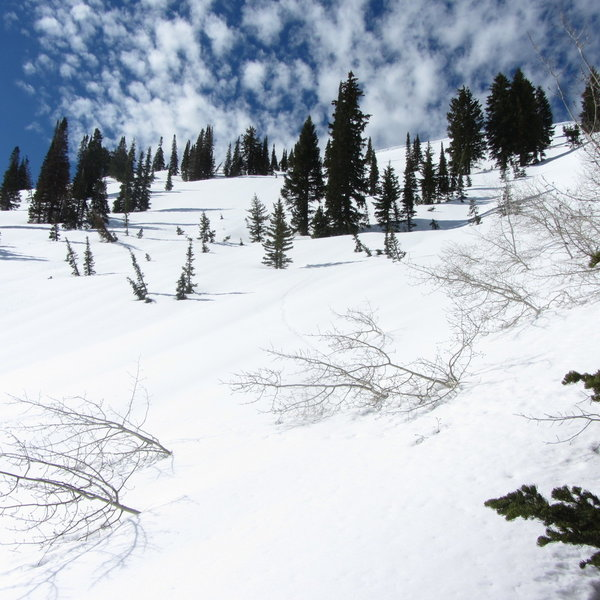 This was taken after skiing a good way down Rice bowl. Lots of great ski terrain here; it's just so hard to access.