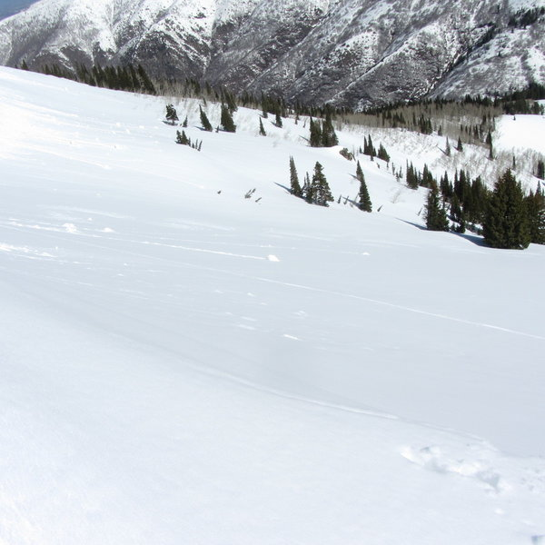 Looking down/across rice Bowl from just below the cornice line.