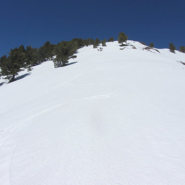 My ski tracks down the south shoulder of Session's Peak.