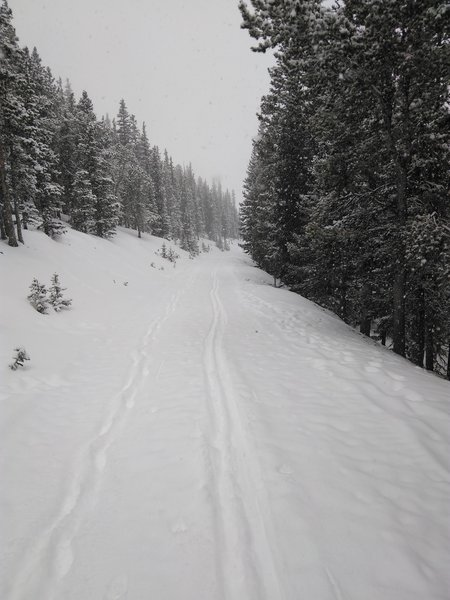 Pleasant skiing to and from the Squaw Mountain Fire Lookout