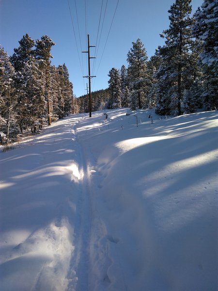 This route avoids the shallow icy cover on the main trail system.