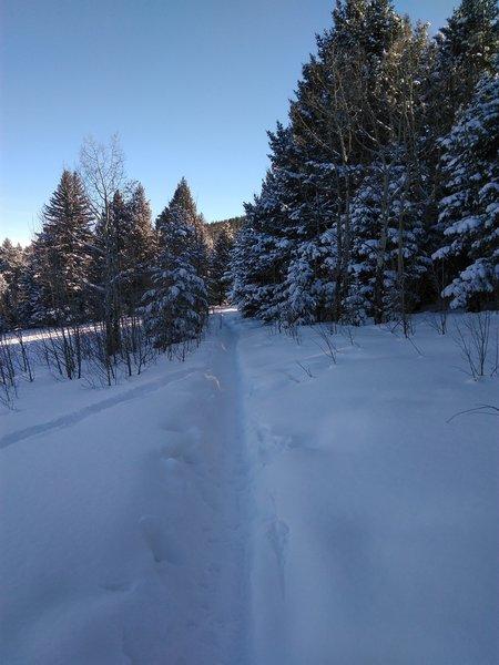 Neighborhood access trail to Meyer Ranch.
