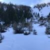 Lower tree'd area