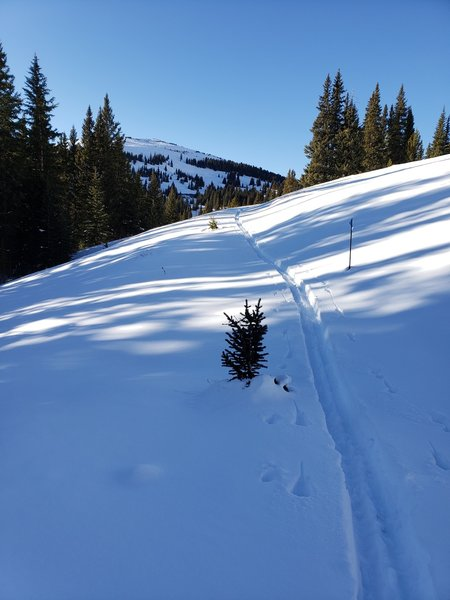 Once the pickets are buried it becomes more difficult to find the trail; however, Boreas Pass road is parallel to you at this point and just uphill... just cut a gentle ascending traverse until you gain the road.