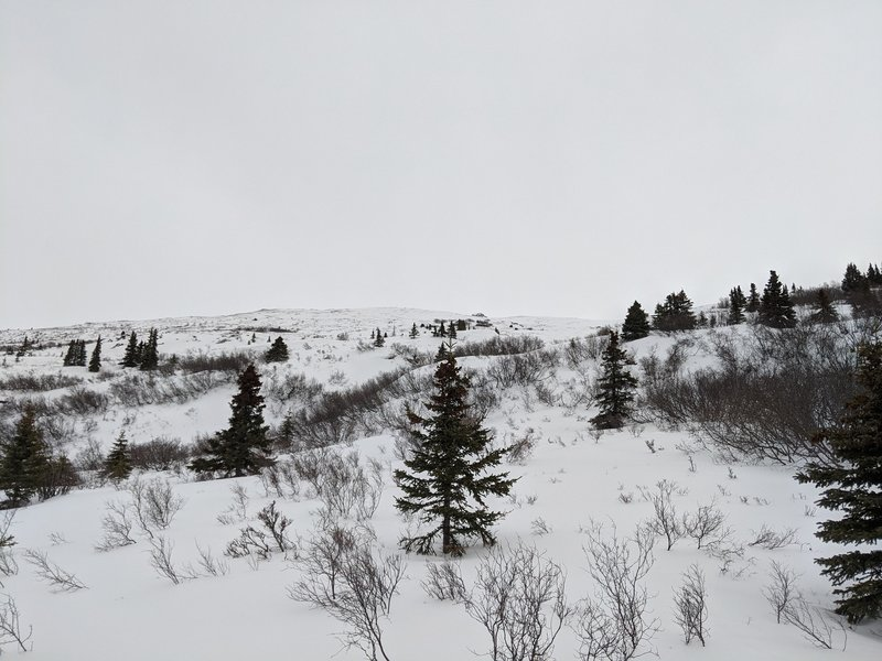 The view upslope from near the end of Satan's Abbey.