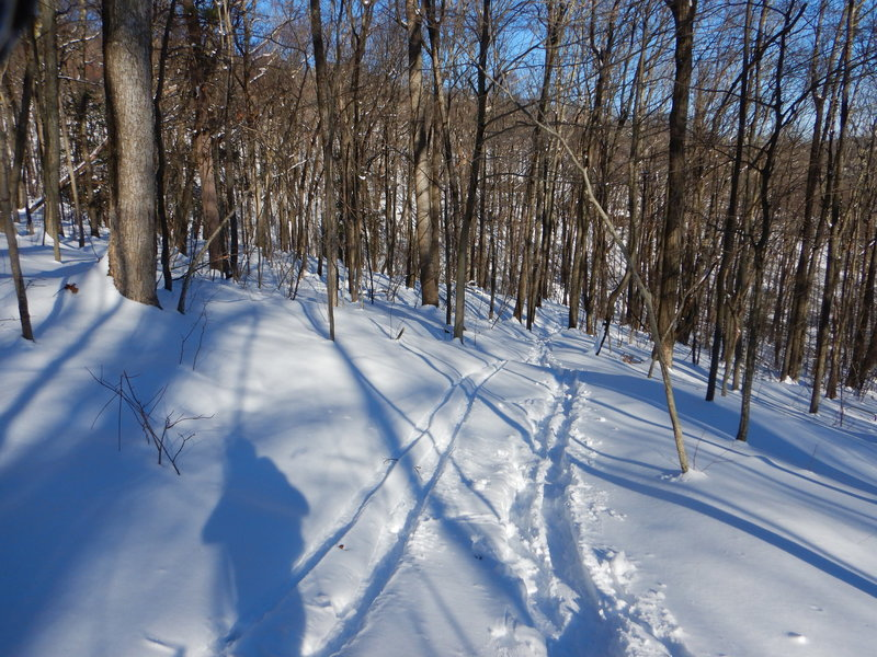 Skiing along the trail is also an option.