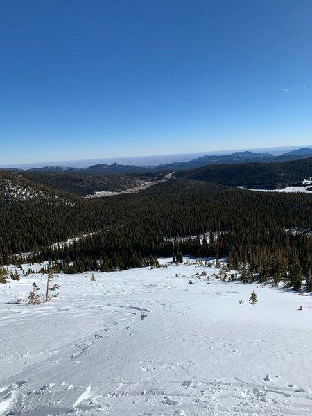 Top of caribou