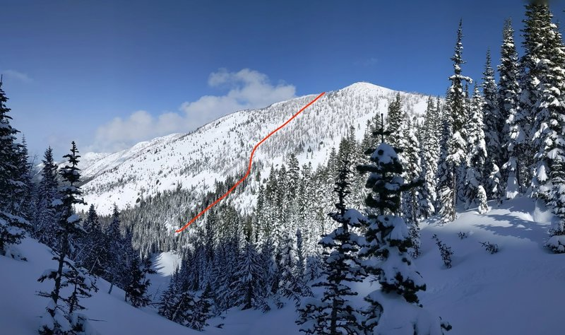 Overview of one uptrack option on the SW face of Platinum Peak.