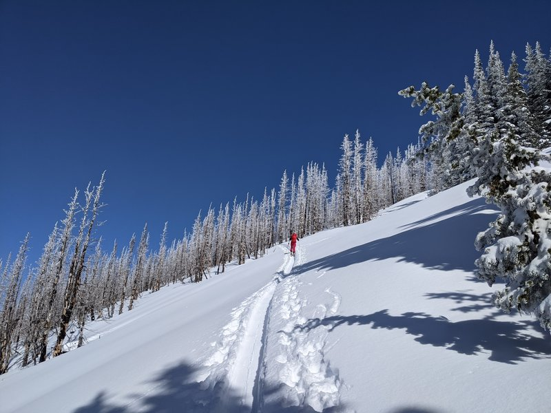Linking lowest angle slopes on the SW face of Platinum Peak.