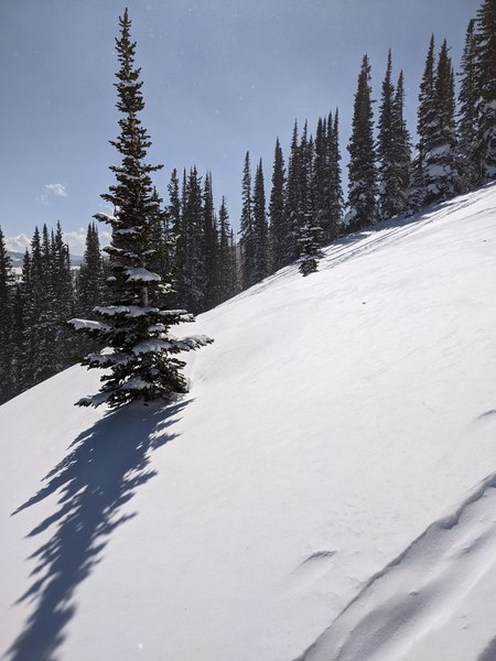 Just some nice wind blown packed powder to ski through. Taken from the skin track up.