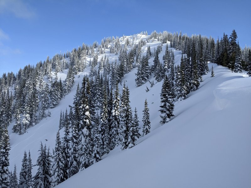 Looking at the NW face (Carnival Chutes?) of Bullion Peak from the NW ridge.