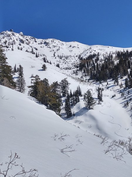 My ski tracks are just barely visible here, and not at all near the sky-line, but you can imagine where the ski line would be coming off the south shoulder of Francis Peak.