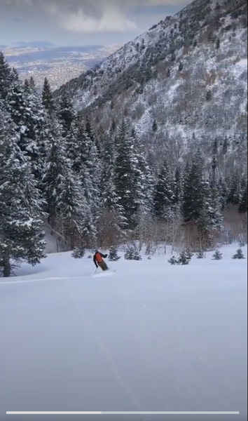 The bottom section of the run, a powdery, steeply-sloped meadow descending into Slide Canyon just above Bear Flats.