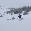 Good snow in the lower glades.