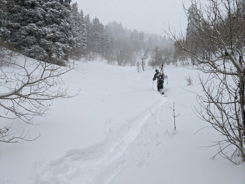Breaking trail on Y Mountain Meadow, some 300 feet below the saddle. Low angle, and great snow!